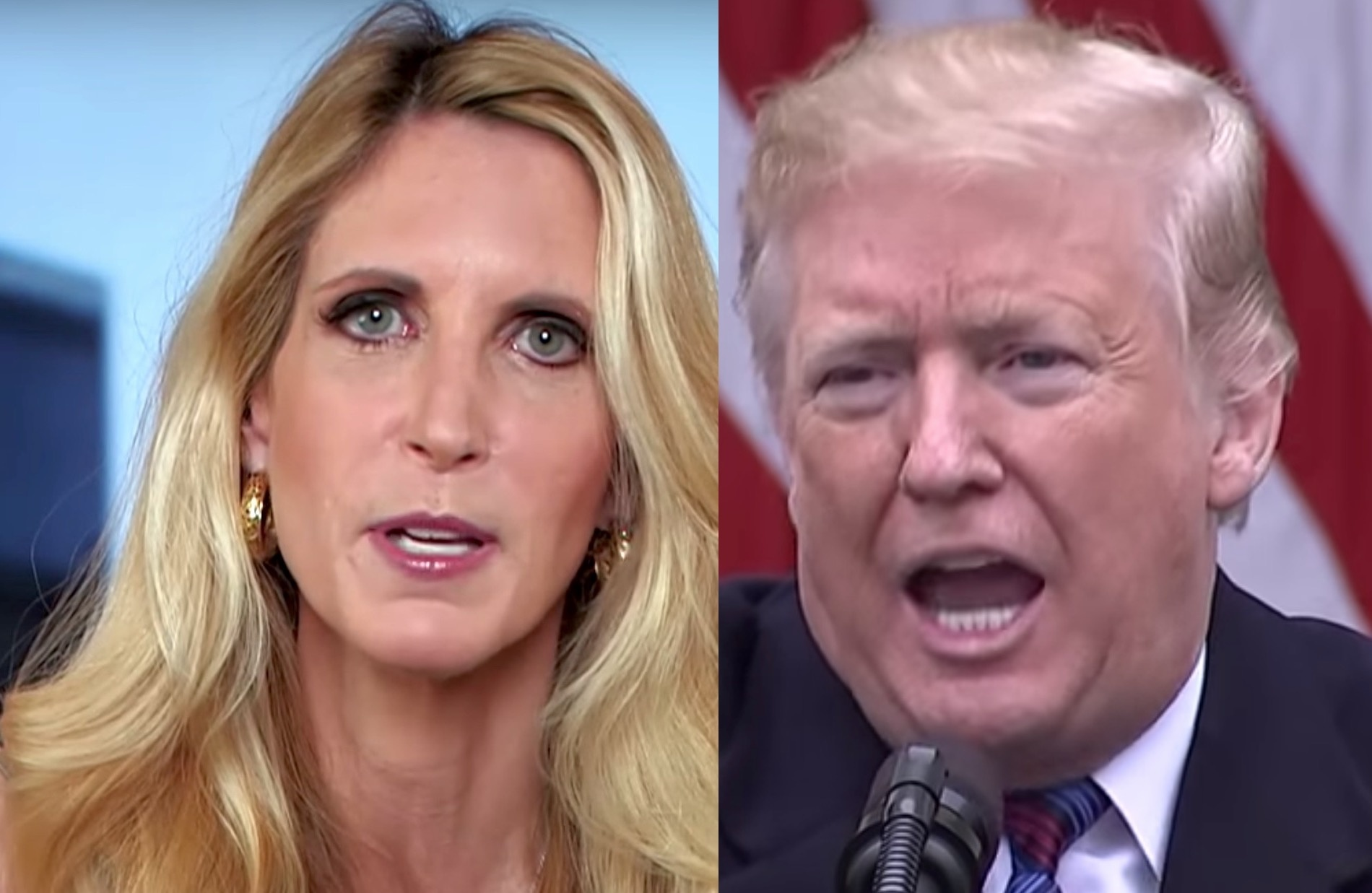 Trump says Ann Coulter is 'off the reservation' over border wall criticism — she responds furiously