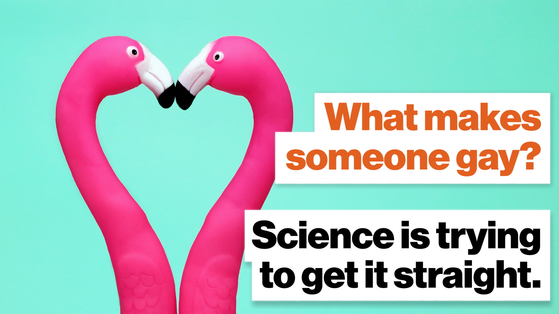 What makes someone gay? Science is trying to get it straight.