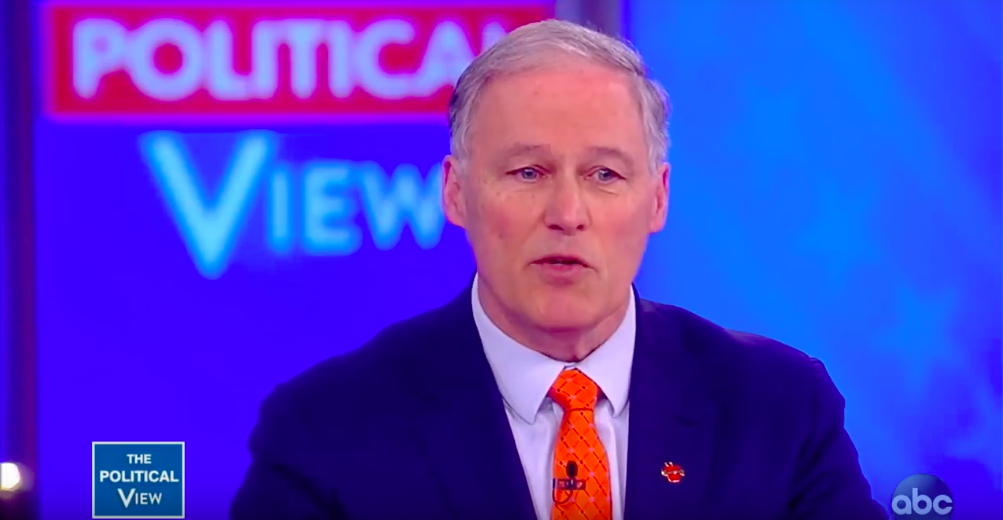 Jay Inslee Humiliates Meghan McCain On 'The View' So He's Officially President Now