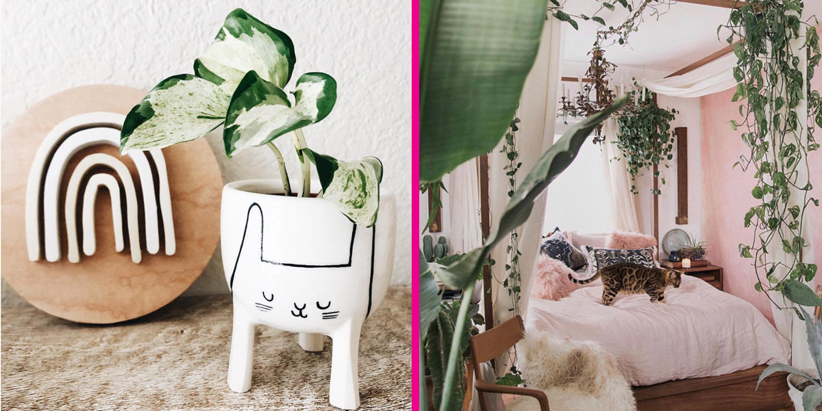 5 Instagrammers Who Inspire Our Passion for Plants