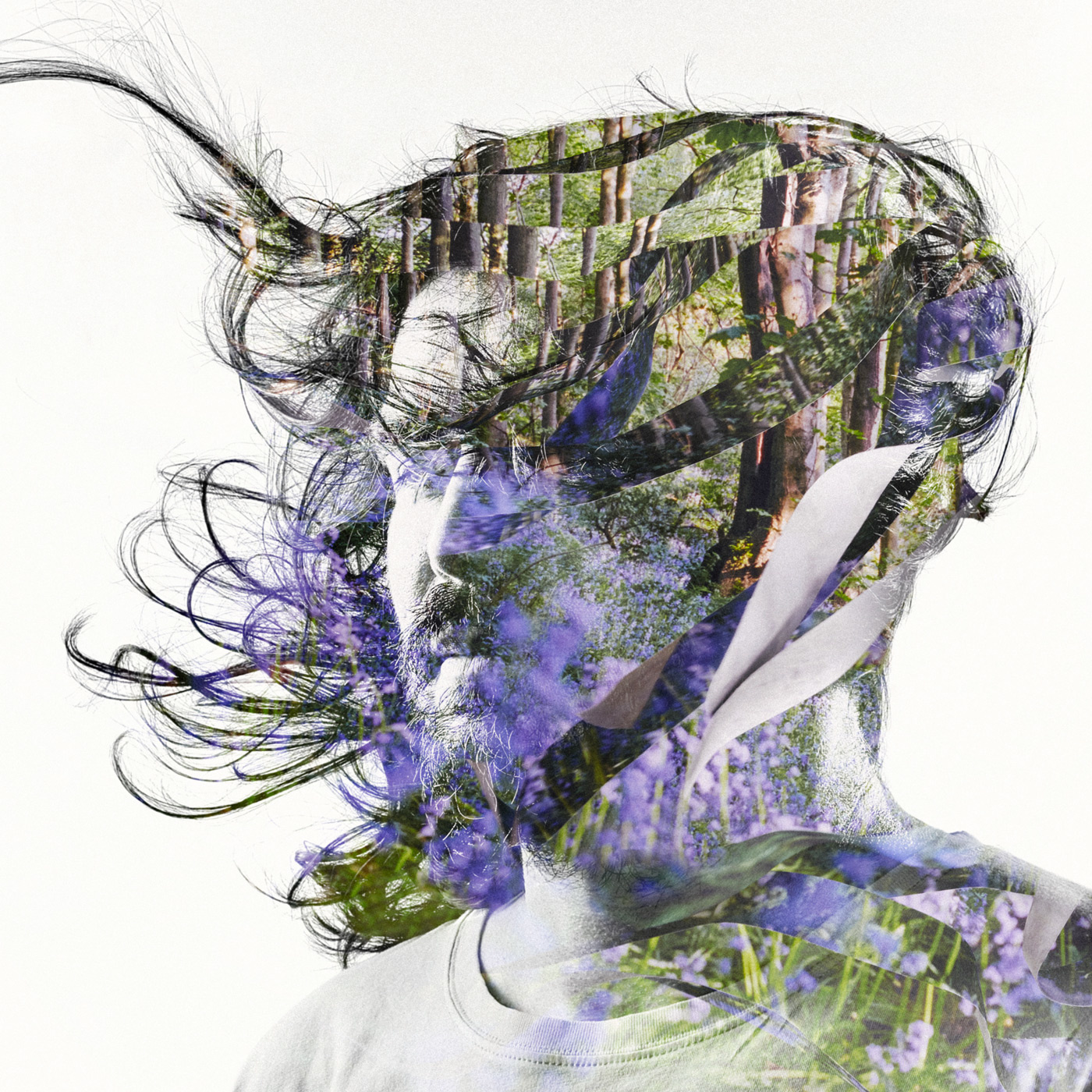 Bibio Creates a Type of Dream Folk with  Curls  (track review)