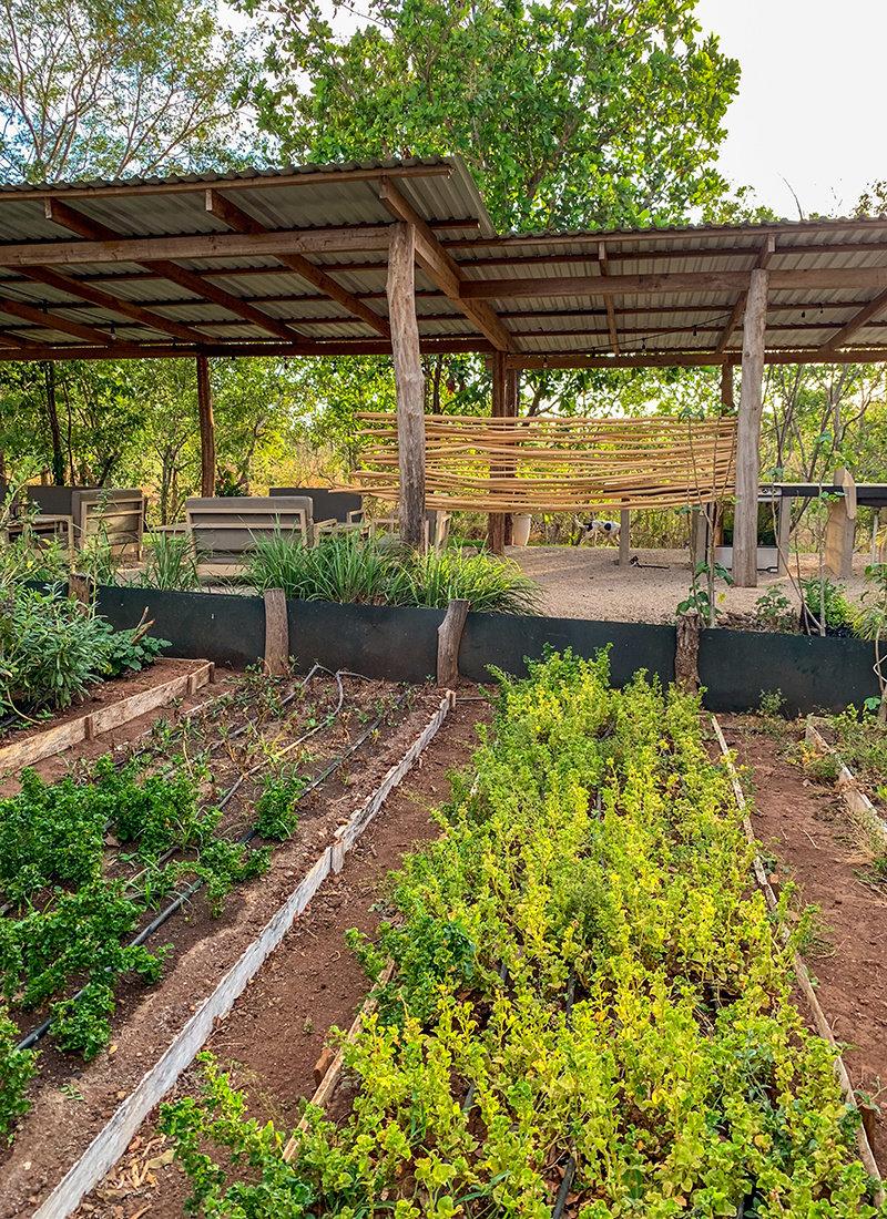La Senda organic farm