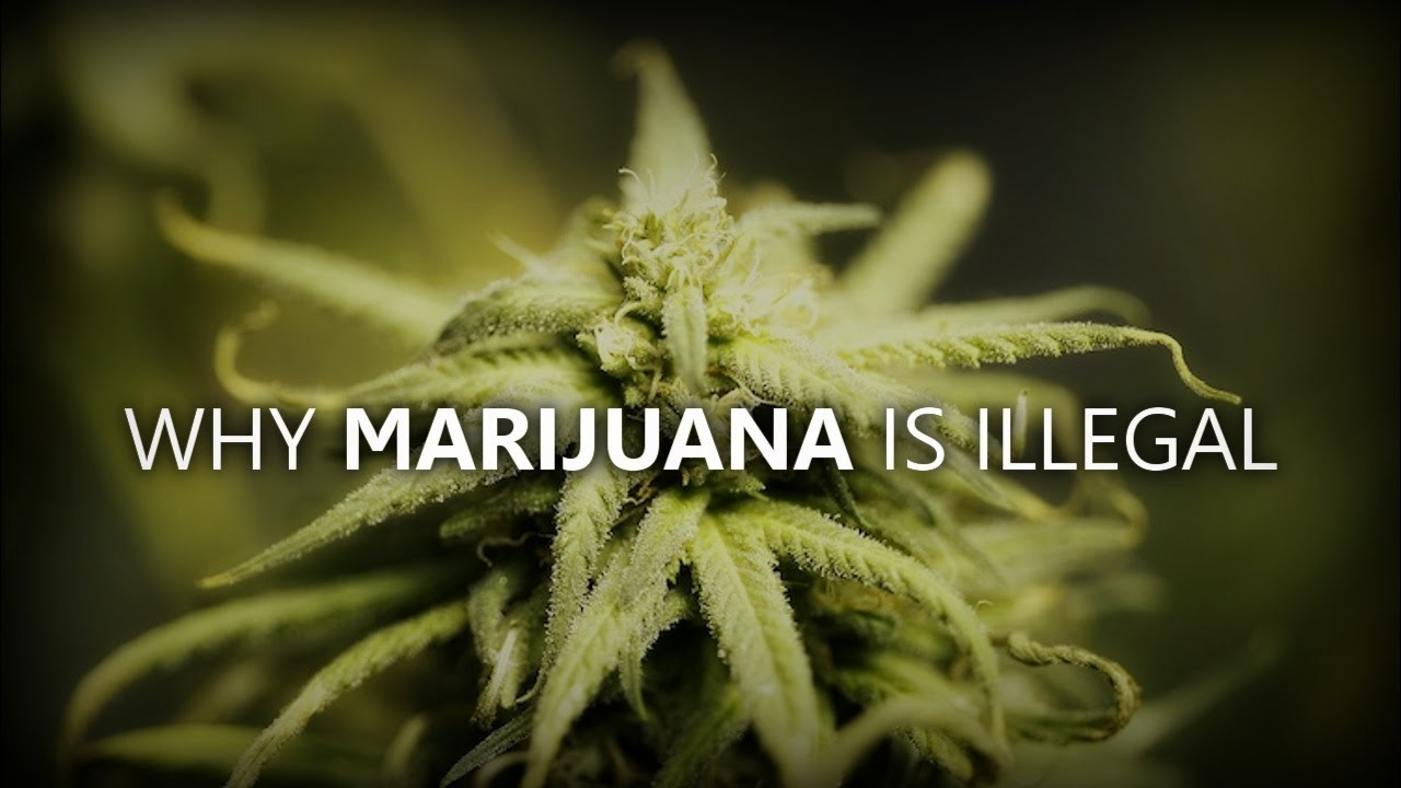 Part 1: Why Is Marijuana Illegal?