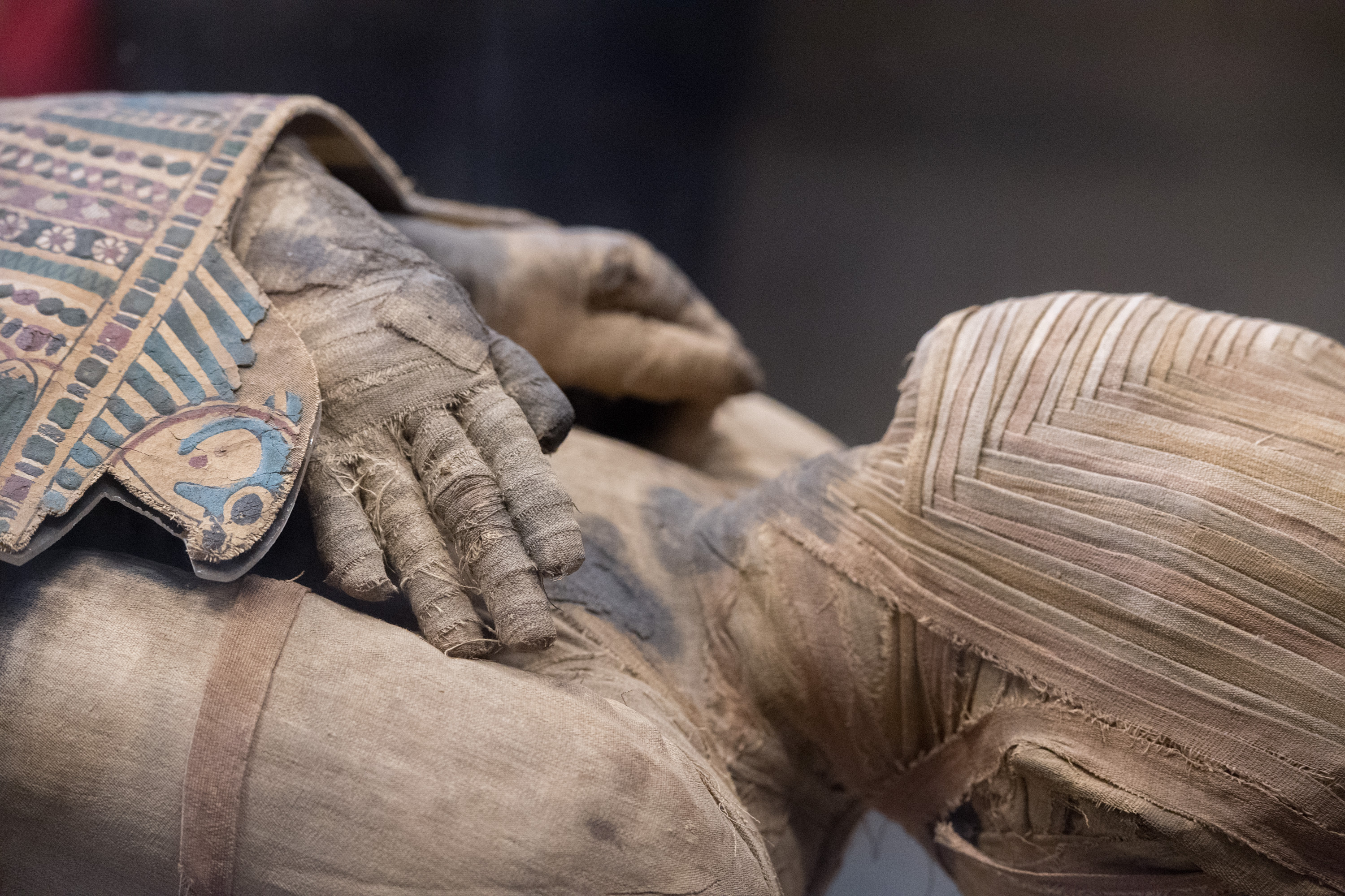 Ancient Egyptian sarcophagus to be opened on live TV this weekend