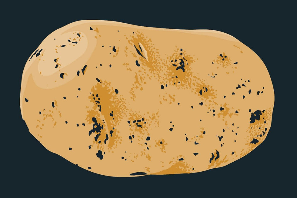 Behold the Humble but Mighty Potato