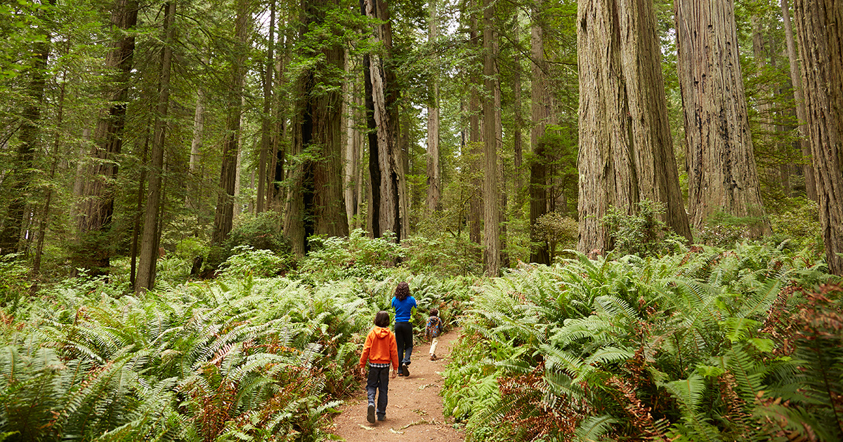 Number FindYourPark and Kick Off National Park Week With a Free Visit Saturday