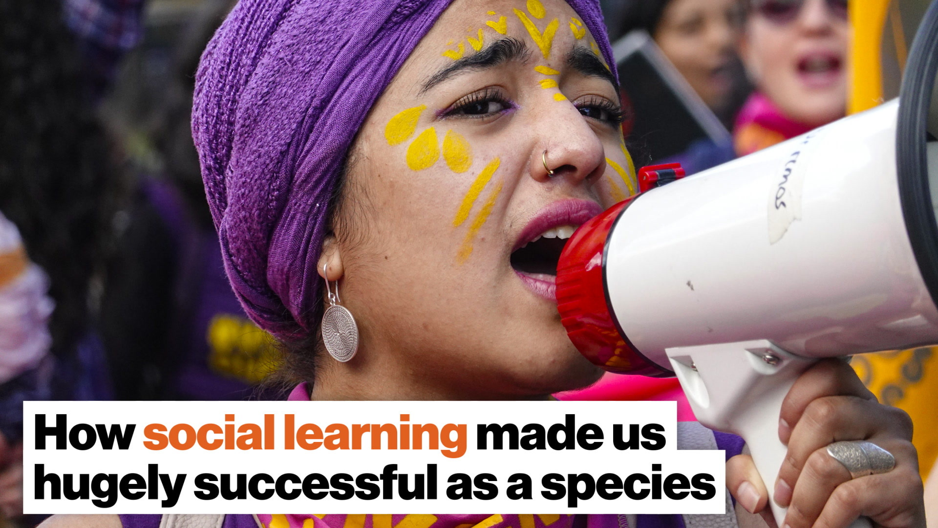 How social learning made us hugely successful as a species