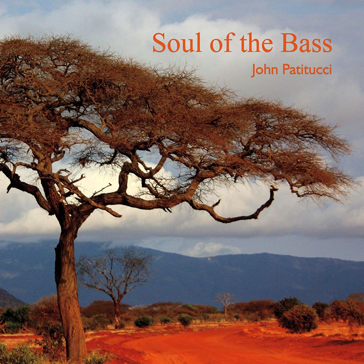 Image result for John Patitucci - Soul Of The Bass