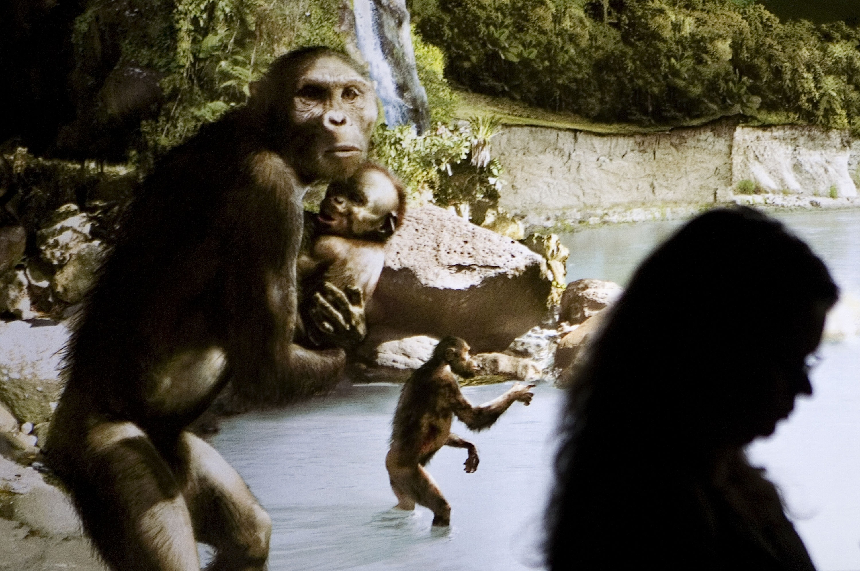 It s time we stopped human evolution – geneticist
