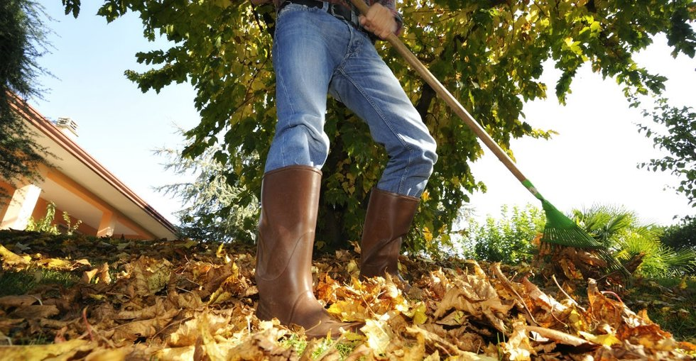 Generator Protection Cover Can Prevent Leaves From Causing Trouble Autumn