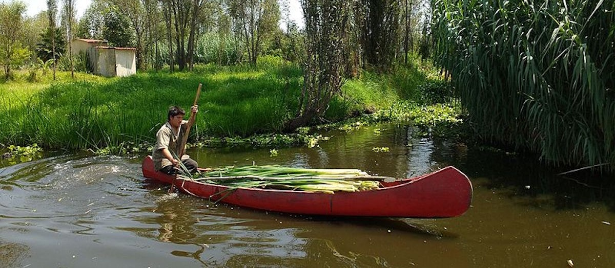 Chinampas What They Are How They Work And Why They Matter Today More Than Ever Upworthy
