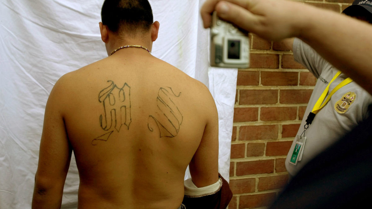 Maryland jail defends shocking decision to release MS-13 killers in spite of ICE detainer