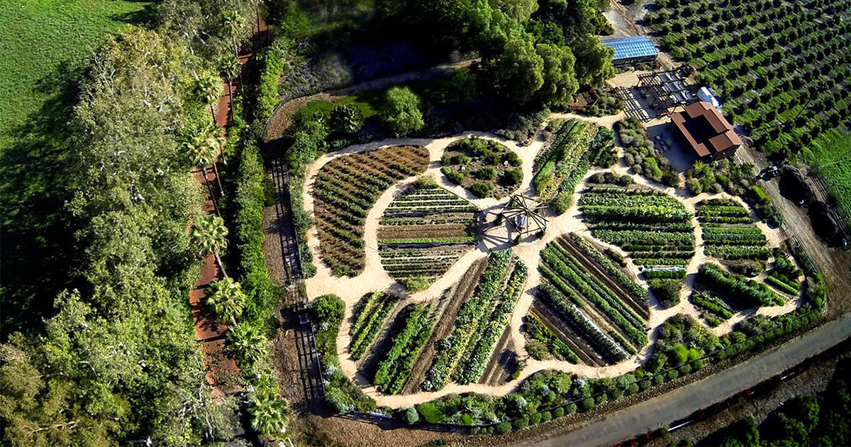 How to Turn Your Patch of Earth From Barren to Bountiful