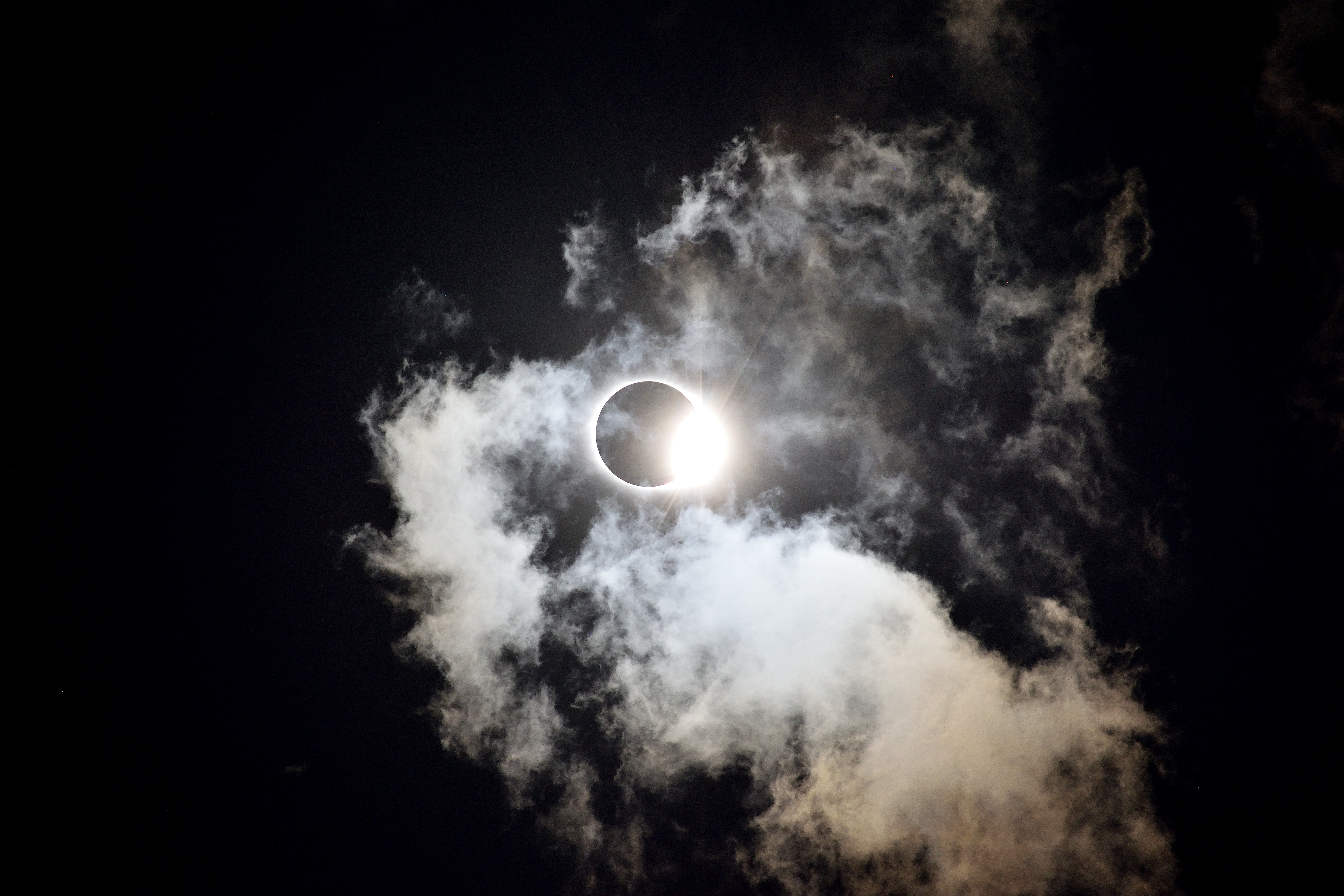Animals do strange things during lunar and solar eclipses