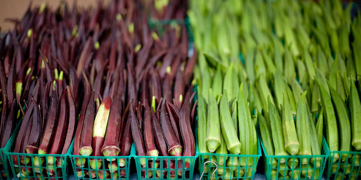 7 Nutrition and Health Benefits of Okra