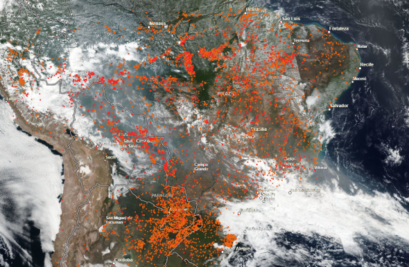 Brazil's Amazon fires: How they started, and how you can help.