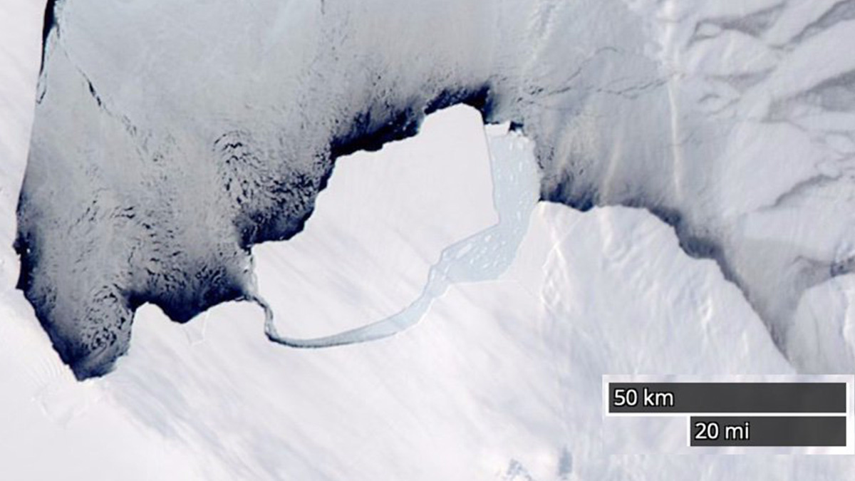 Antarctica Just Lost a 347 Billion Ton Iceberg but This Time the Climate Crisis Is Not to Blame