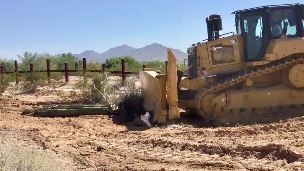 Watch Bulldozers Plow Protected Cacti for Trump's Border Wall in Organ Pipe Cactus National Monument