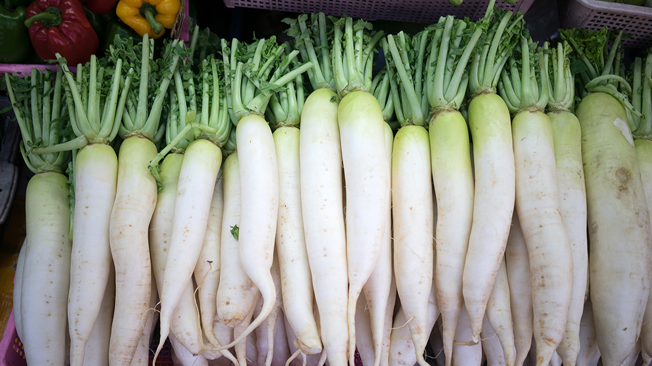 What Is Daikon Radish and What Is It Used For?