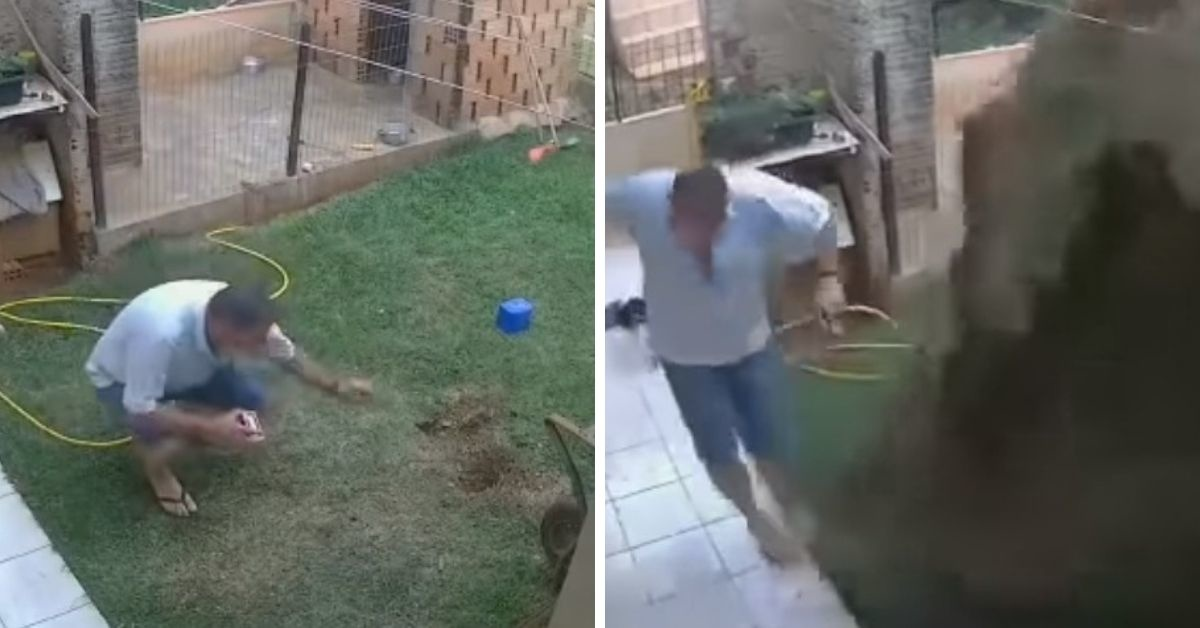 Security Camera Catches Guy Accidentally Blowing Up His Back Yard While Trying To Kill Cockroach Infestation