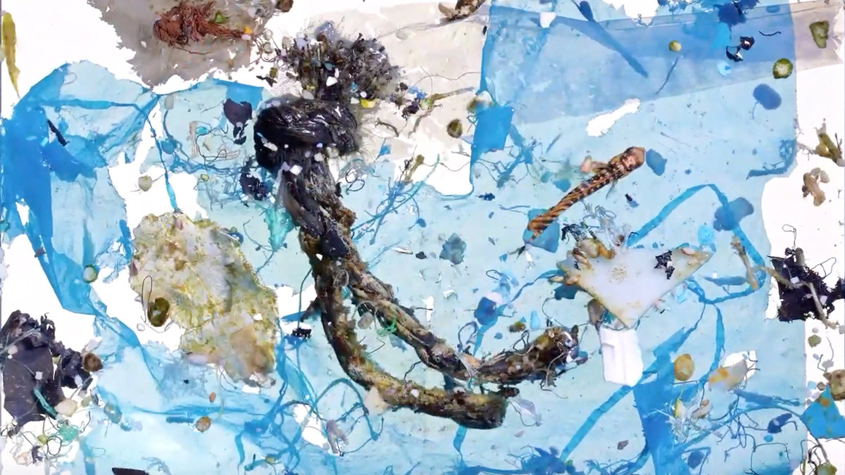 Crucial Ocean Feeding Ground for Baby Fish Contains 7x More Plastic Than