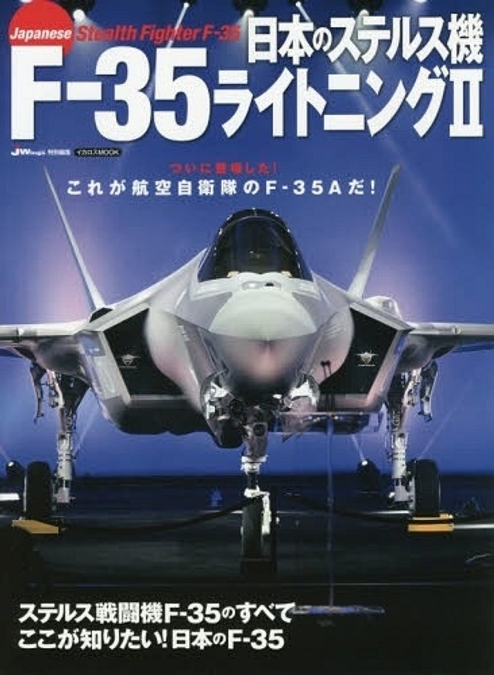 After A Japanese Pilot Was Killed, The F-35 Stealth Jet Has Been Under A Microscope