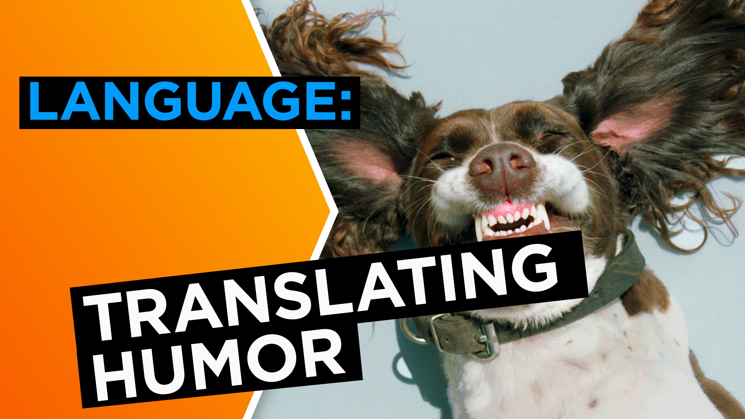 What's funny? How comedians translate humor.