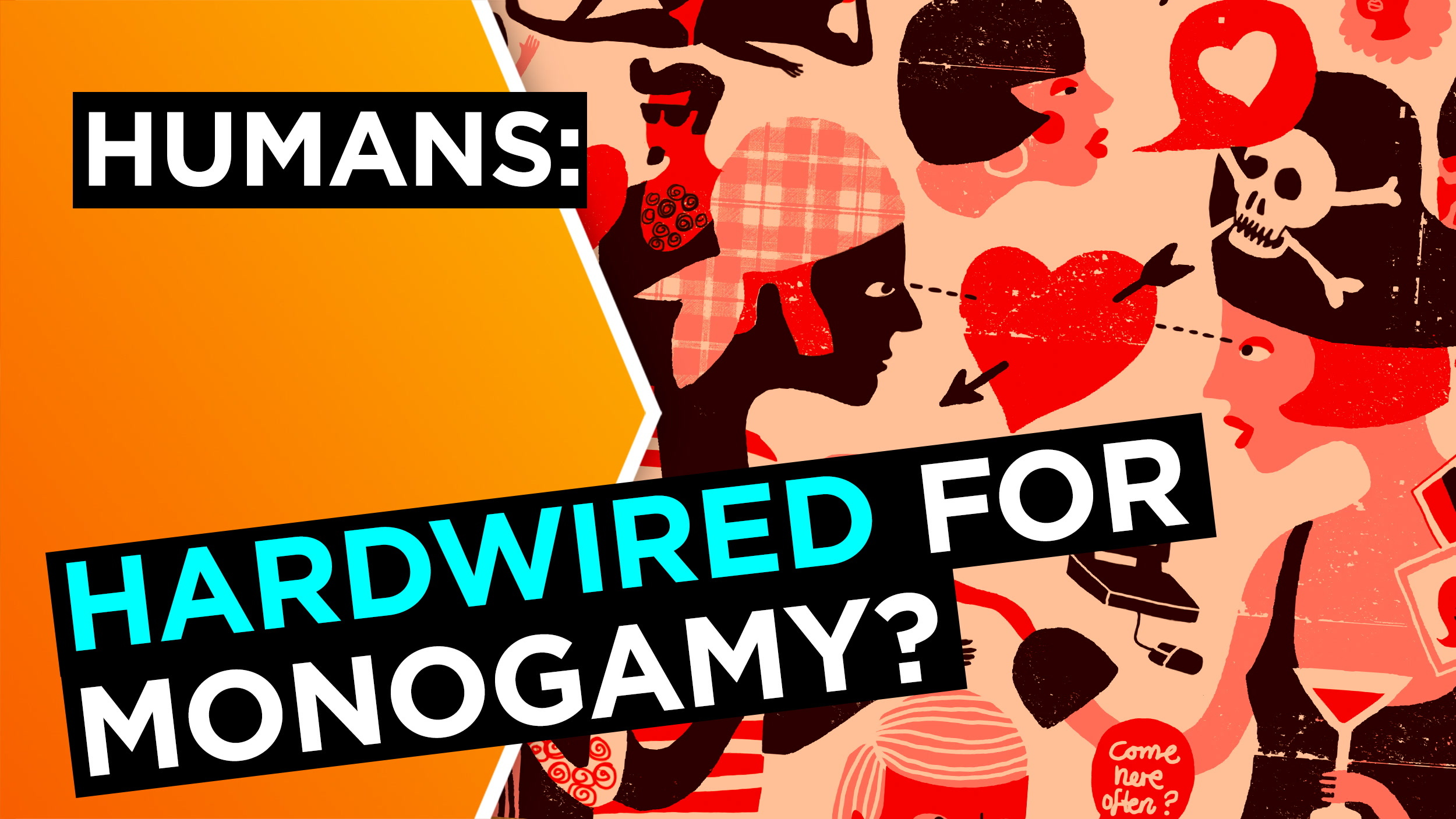 Are humans hardwired for monogamy?