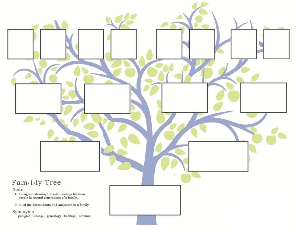 start your family tree - findmypast