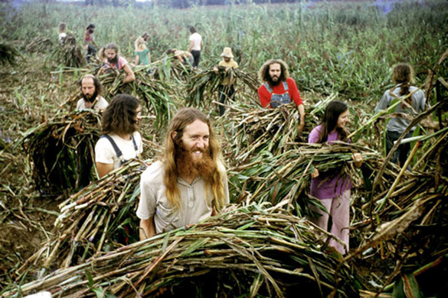 Eye opening images of one of america 39 s hippy communes for America s second harvest