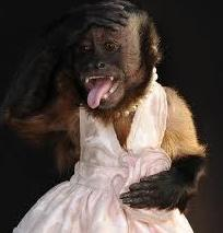 Lady Gaga Tries On a Wedding Dress IRL + Crystal the Monkey Makes ...