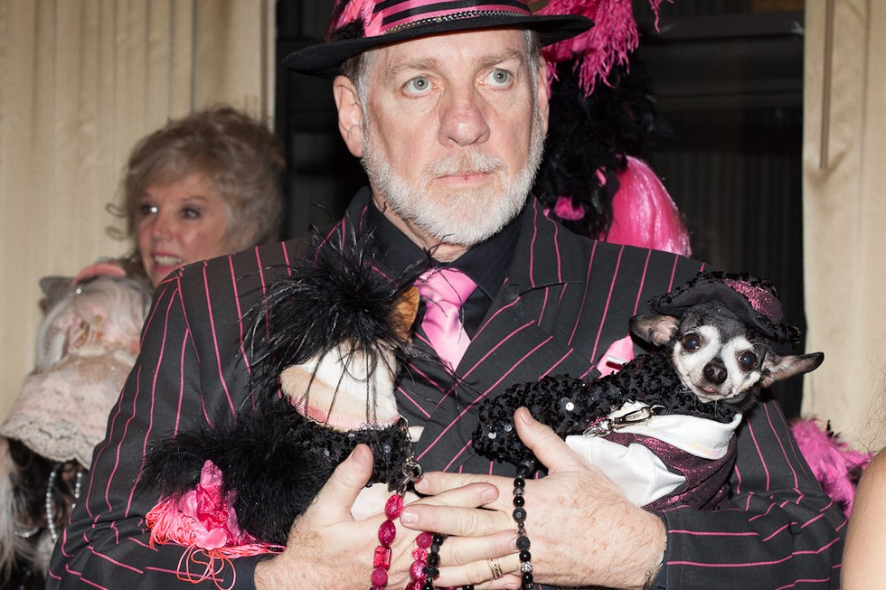 dog fashion show