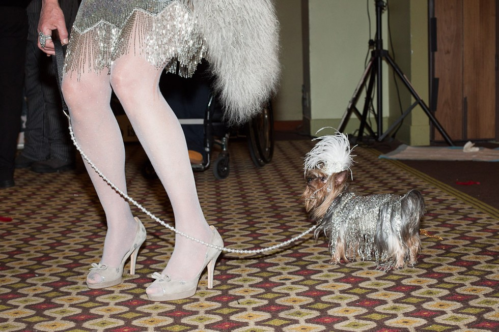 dog fashion show