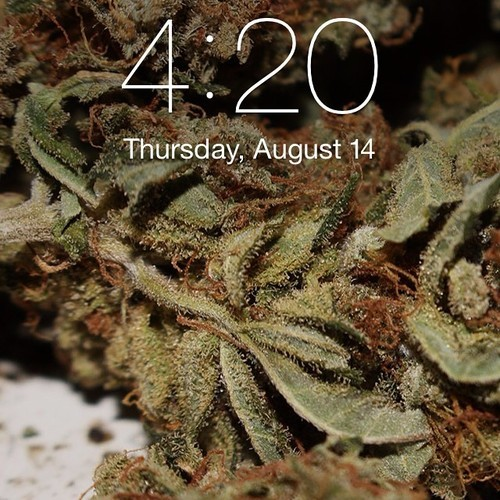 A Tinder for Stoners May Be Coming Soon