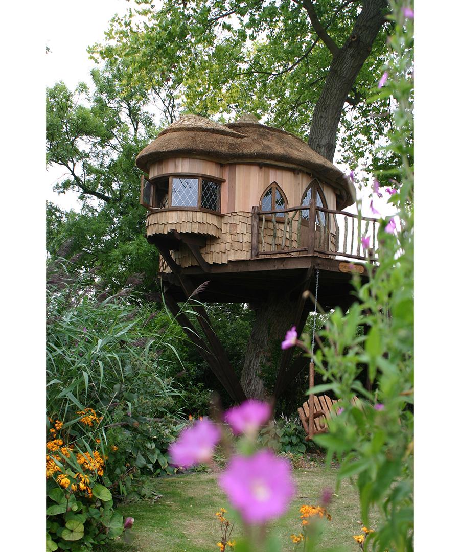 Amazing Tree Houses around the World
