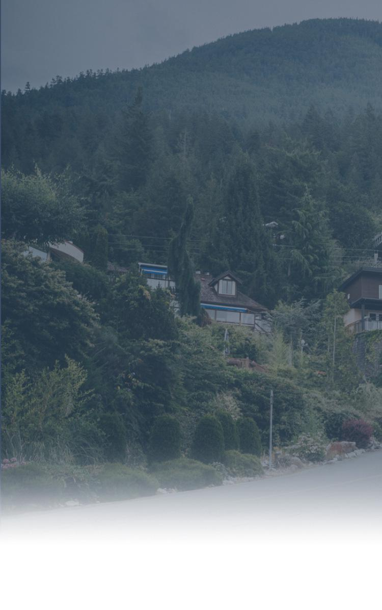 a cluster of cottages on a mountain, surrounded by forest