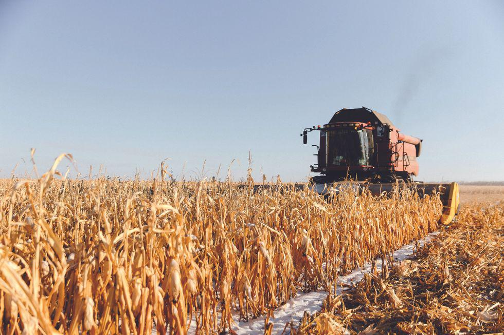 An Army of Grain-harvesting Robots Marches Across Russia thumbnail