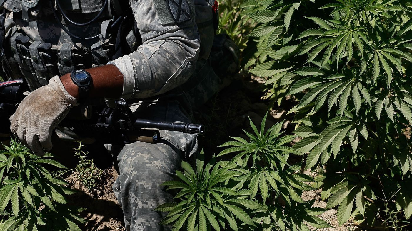 5 Things To Know About PTSD, Weed and Veterans