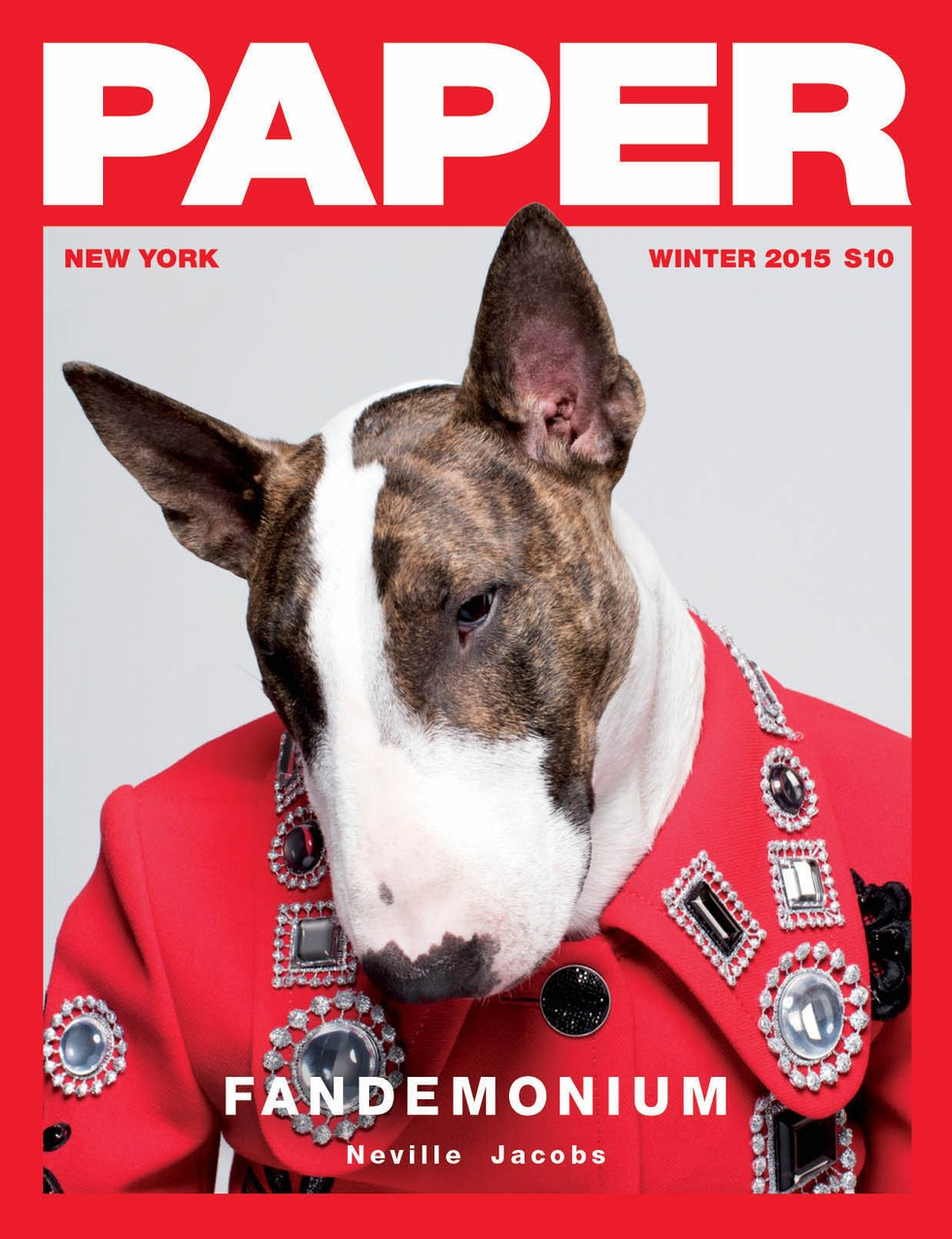 Paper Magazine's Fandemonium Cover Stars