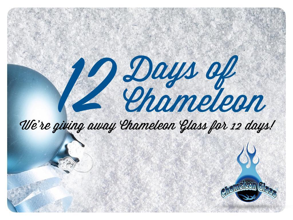 On The First Day of Christmas Chameleon Gave To Me...