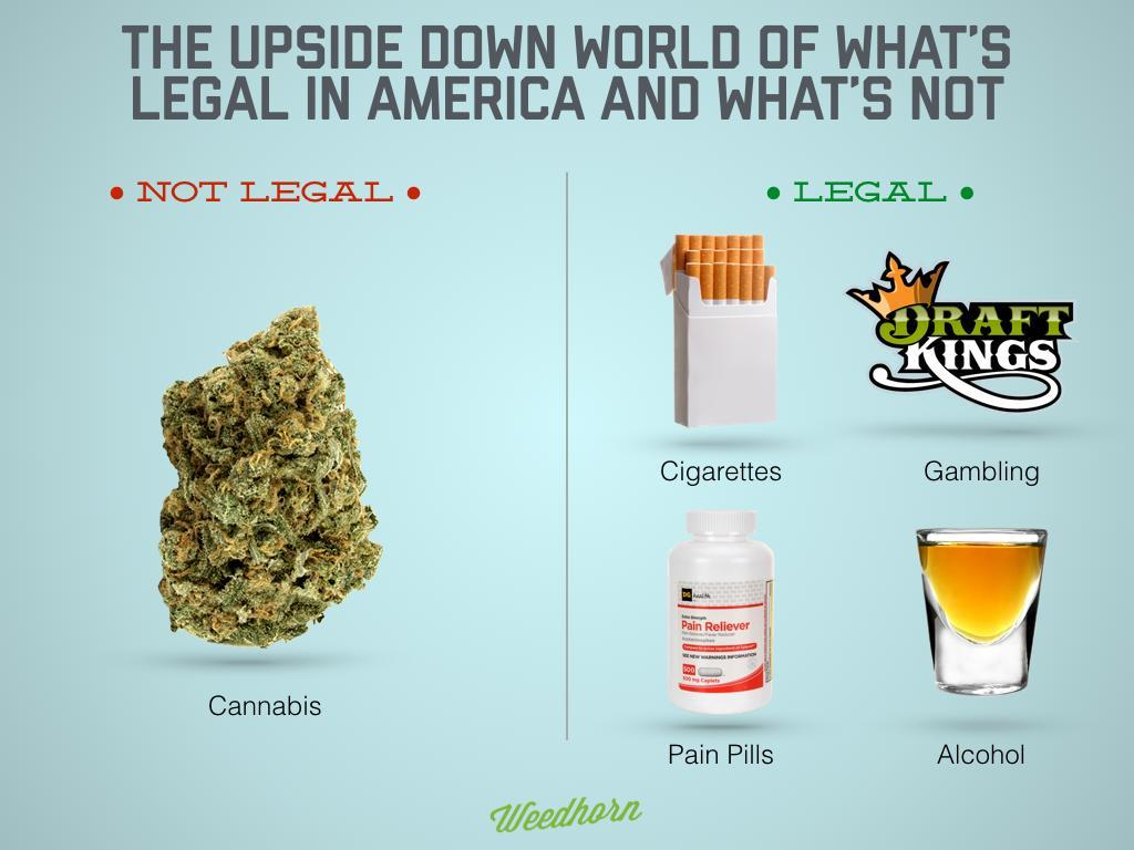 What's Legal And What's Not In Upside Down America