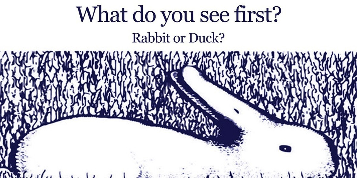 What do you see first rabbits How do you keep rabbits out of your garden