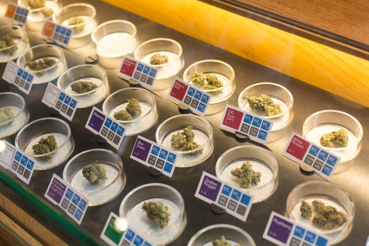 The Honeymoon Is Over, Oregonians—Taxes Kick In On Pot Sales Starting Jan. 4th