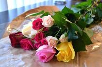 jai 28 ans jhabite dans le sud de la france et je suis la pour trouver une femme algrienne qui a la tte sur les paules pour se marier tranquillement - Cherche Femme Kabyle Pour Mariage