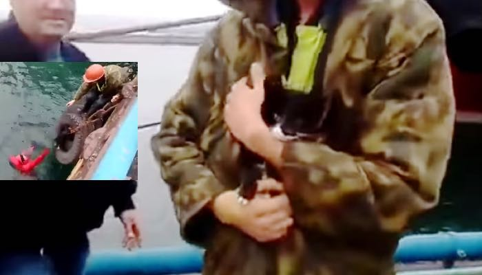 Heroic Man Jumps in Icy Water to Rescue Kitten Stuck in Cargo Boat