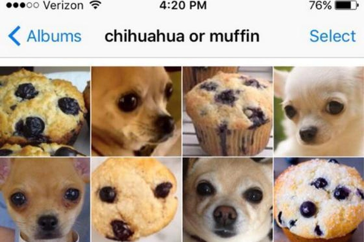 """This """"Puppy Or Bagel"""" Meme Is The Best Thing To Happen To The Internet"""