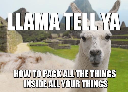 Llama Tell Ya