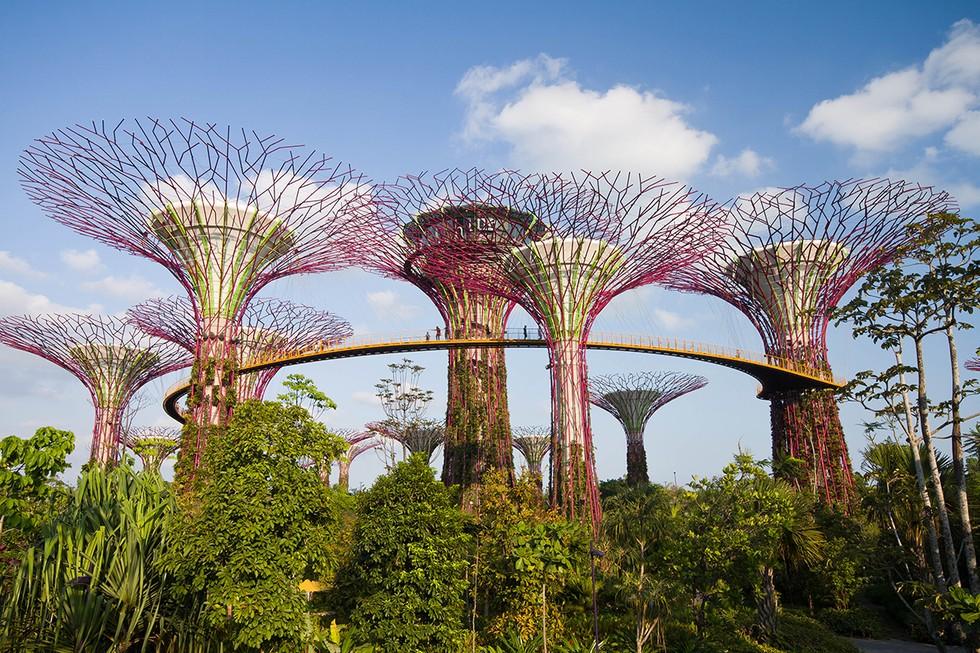 Singapore Nicknamed The Garden City