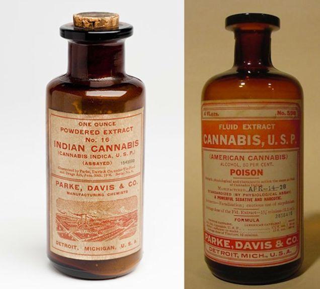 12 Vintage Cannabis Medicine Bottles