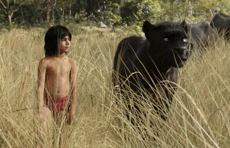 Jungle Book Teaches Acceptance